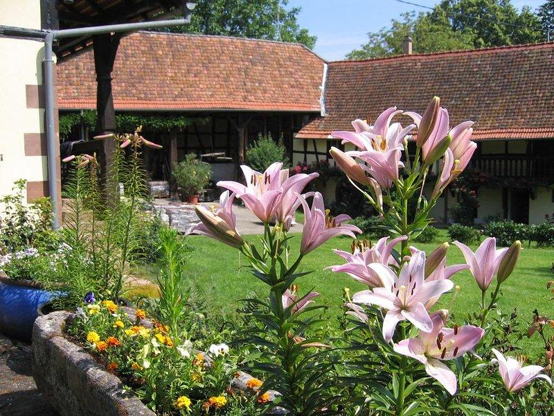 Gîte indépendant dans ferme alsacienne de charme avec piscine et verger, casa vacanza a Lichtenberg