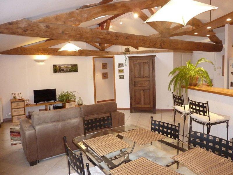 Appart de charme centre historique vue sur le Tarn, holiday rental in Meauzac