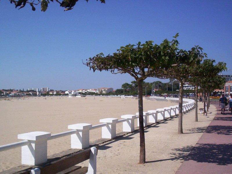 LA MAISON DES BEGNASSOUS *** 'CLEMATITE' location de vacances, casa vacanza a Semussac