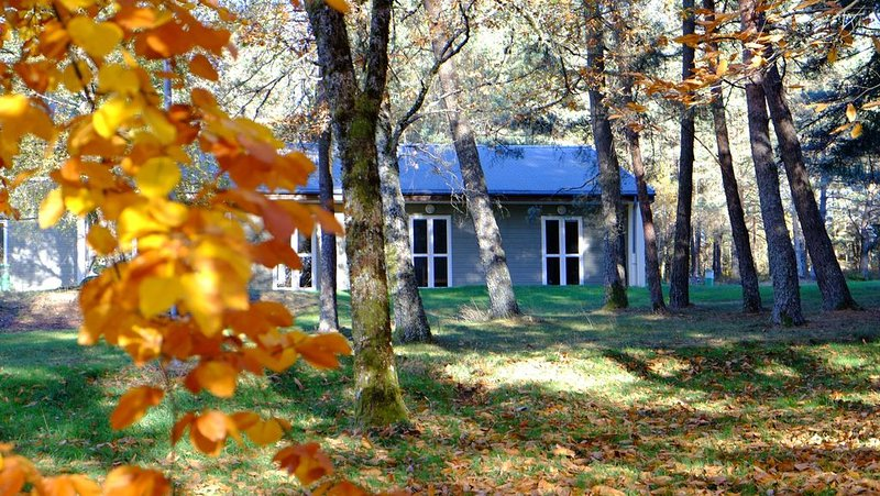 ECOPARC des MONEDIERES, holiday rental in Madranges