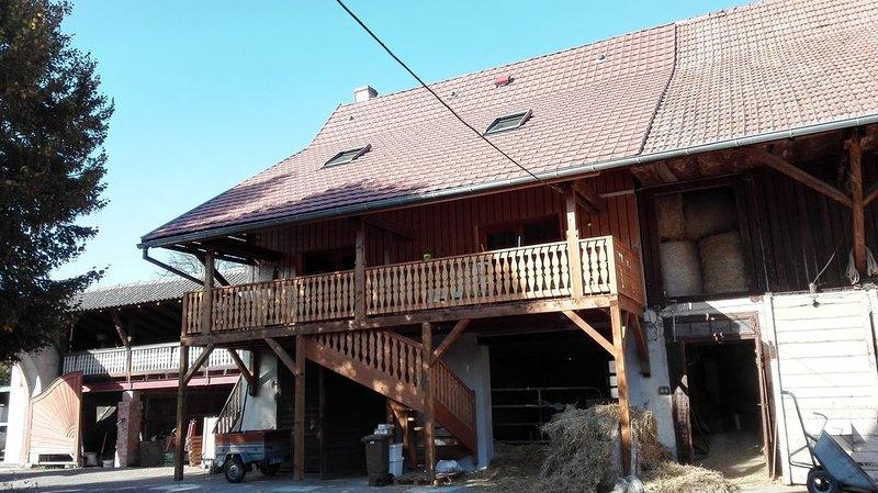 Chez Marguerite Gîte à la ferme, Ferienwohnung in Colmar