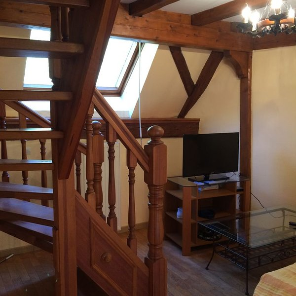 Charmant appartement «au talus», holiday rental in Aubure