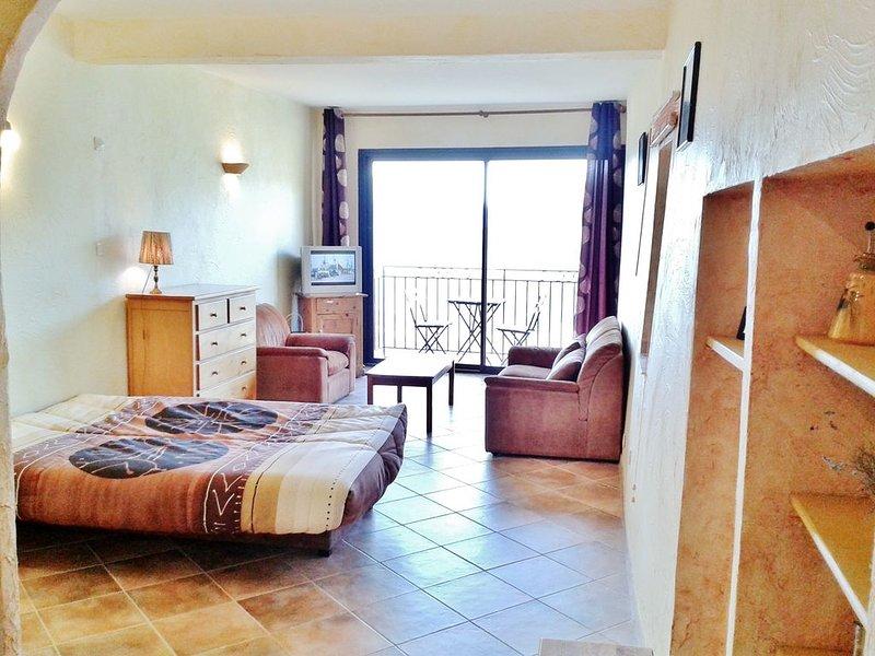 appartement a belvedere avec vue imprenable sur la vallée, holiday rental in Roquebilliere