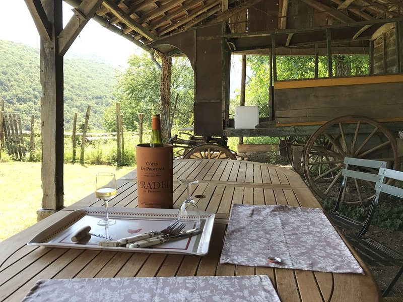 Faites le plein de nature ... dans les Pyrénées !, holiday rental in Estancarbon