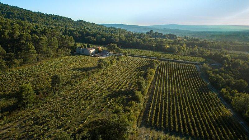 Gîte du Vignoble Château Saint Pons dans le parc Naturel du Luberon, holiday rental in Villars en Luberon