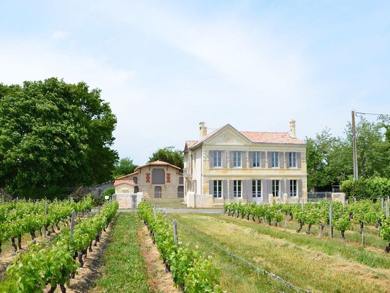 Château La Tour Blanche, au milieu des vignes et à 25 minutes des plages, holiday rental in Prignac-En-Medoc
