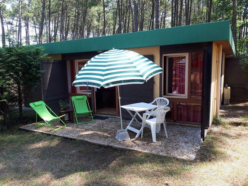 Maison, 4 pers., piscine 3 bassins,  Leon village sous les pins, vacation rental in Leon