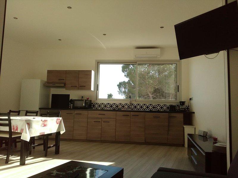 Appartement de 65 m² & cour exterieur, vue sur la pinède, alquiler vacacional en Lansargues