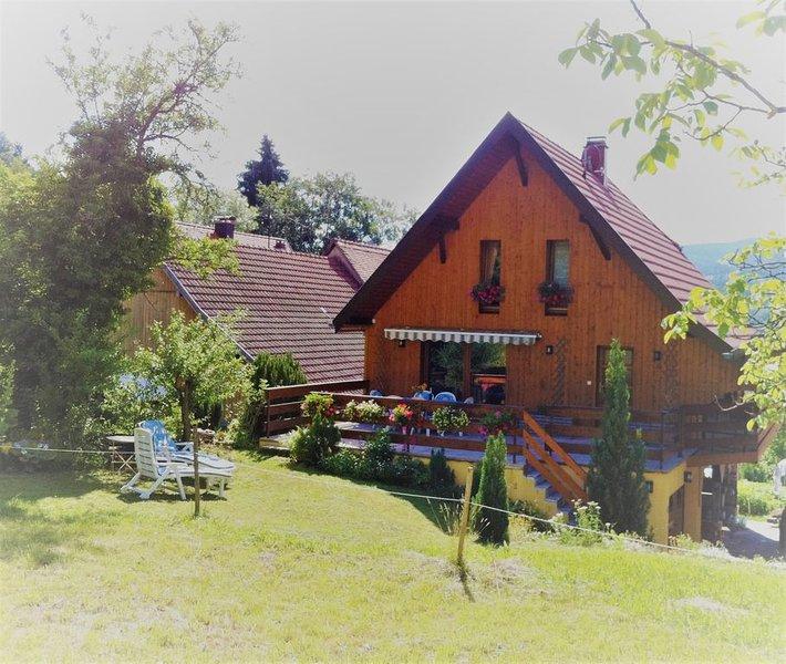 CHALET A LA MONTAGNE , et proche du vignoble Alsacien, holiday rental in Sondernach