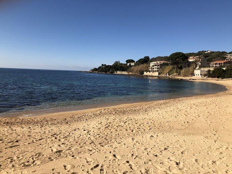 Appartement pieds dans l'eau (1 minute a pied de la plage), holiday rental in Casaglione