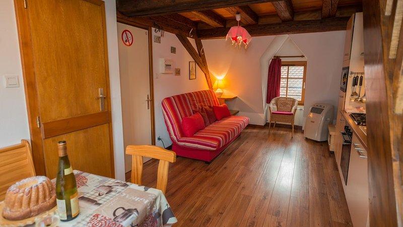 Gite tout confort 2 pers à (3) Eguisheim à 5 km Colmar, aluguéis de temporada em Pfaffenheim