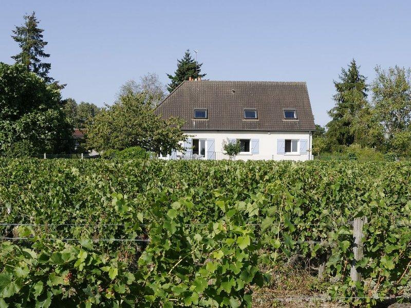 Gîte-appartement Chez Lucie en Touraine, holiday rental in Montlouis-sur-Loire