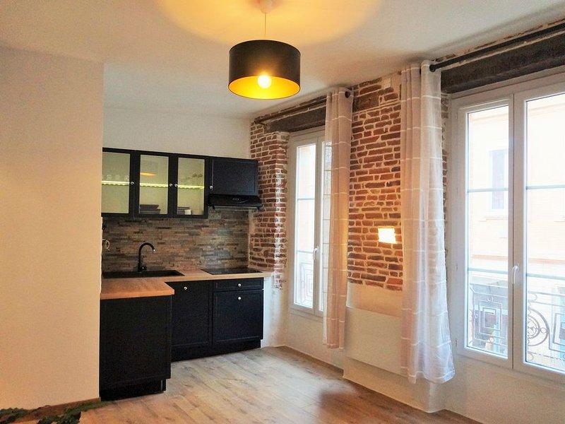 QUARTIER ST-PIERRE - Appartement cosy au coeur de Toulouse, en bord de Garonne, aluguéis de temporada em Haute-Garonne