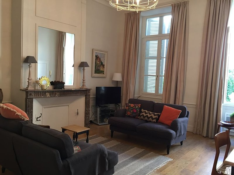 Luxury apartment in the old quarter of Amboise close to Château and restaurants, casa vacanza a Nazelles