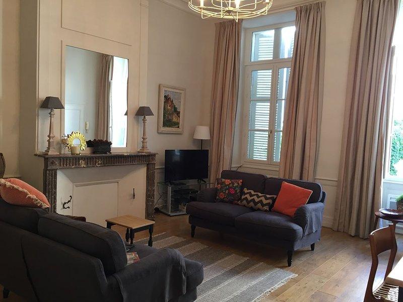 Luxury apartment in the old quarter of Amboise close to Château and restaurants, location de vacances à Pocé-sur-Cisse