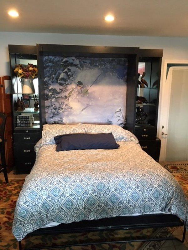 1 queen Murphy bed