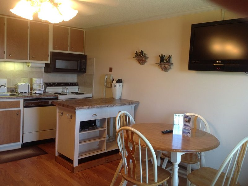 COZY  *SLOPE SIDE CONDO* - BEAUTIFUL VIEW - SKI IN/OUT - FREE WIFI & PARKING!!, holiday rental in Bartow