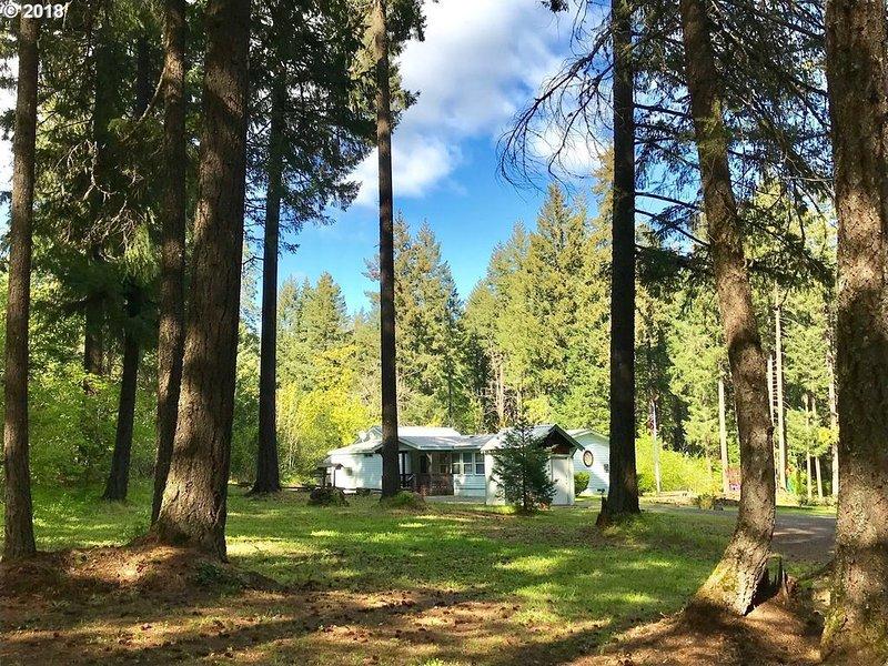 White Salmon River House, vacation rental in White Salmon