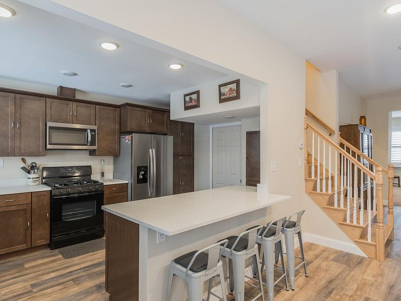New Executive Apartment Cleveland's Little Italy, holiday rental in South Euclid