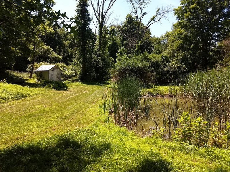 Semi-Secluded House in the woods., vacation rental in Catskill