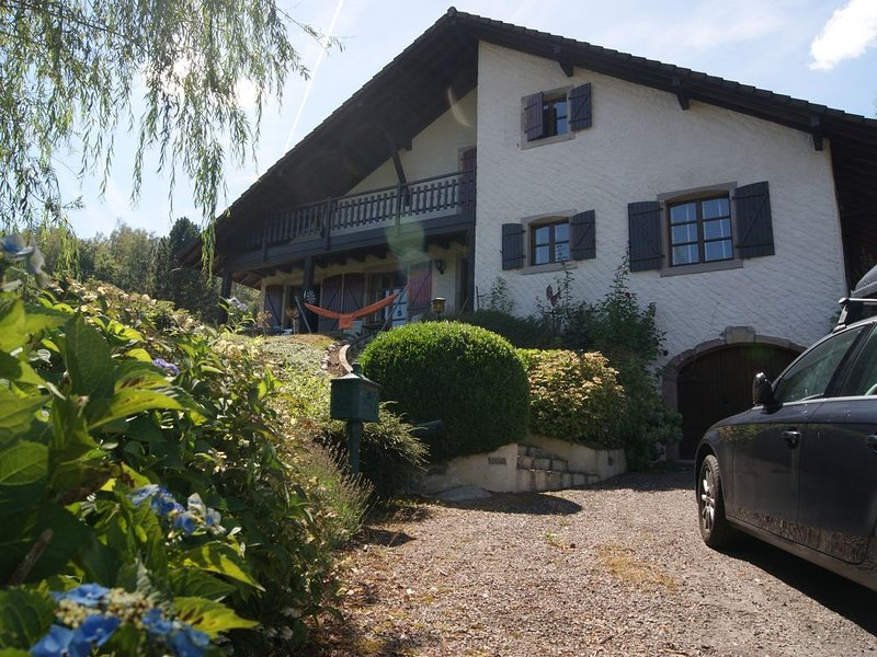 Spacious, chalet-style home, full comfort, WIFI, BBQ, large garden, up to 11 prs, alquiler vacacional en Ferdrupt