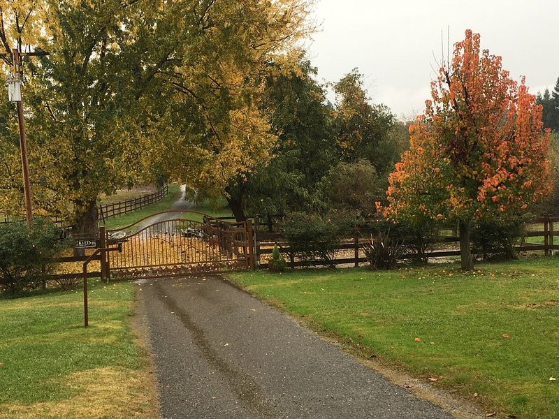 Whirlawind Horse Ranch  We are pet friendly!, location de vacances à Lincoln