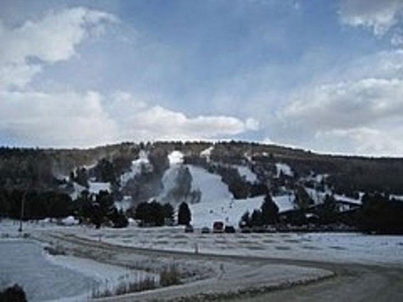 Mohawk Ski Area is just ten minutes away!