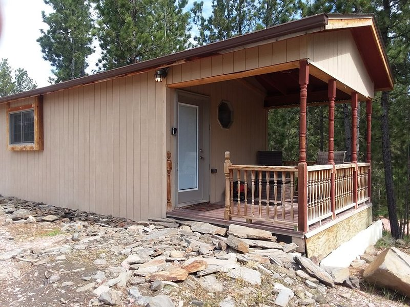 Cozy studio BH cabin located near Crazy Horse Monument and Custer State Park., holiday rental in Custer