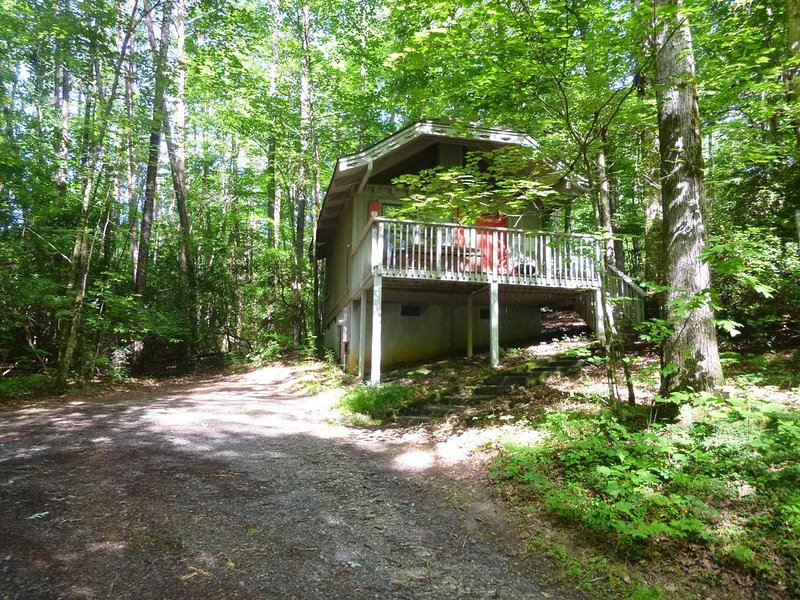 Bear Paw #7(1 bedroom Queen)Private; secluded.Hot tub cottage;Pet Friendly, holiday rental in Sautee Nacoochee