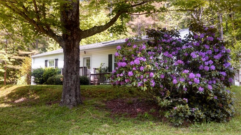 Quiet, Cozy,  Riverfront  3 BR Home with Mountain and Forest Views, location de vacances à Webster Springs