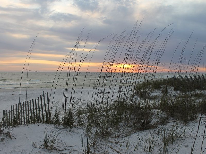 Enjoy a Stay on Inlet Beach, vacation rental in Inlet Beach