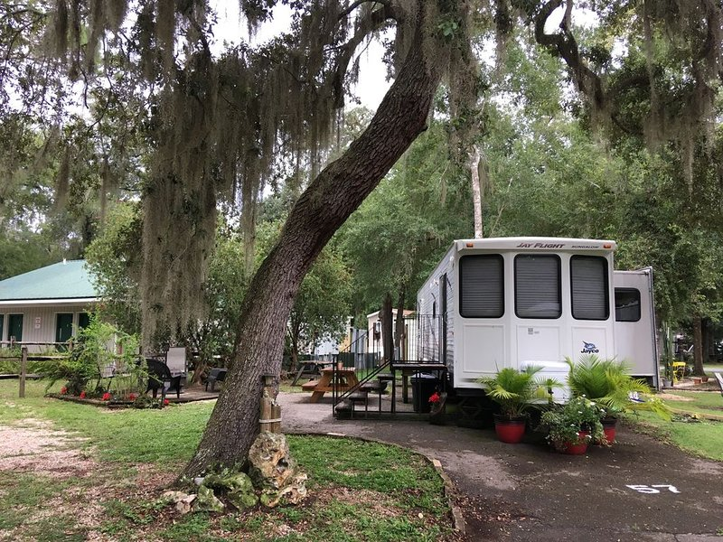 Beautiful get-away in Florida's Ocala National Forest * Salt Springs Resort!, aluguéis de temporada em Welaka