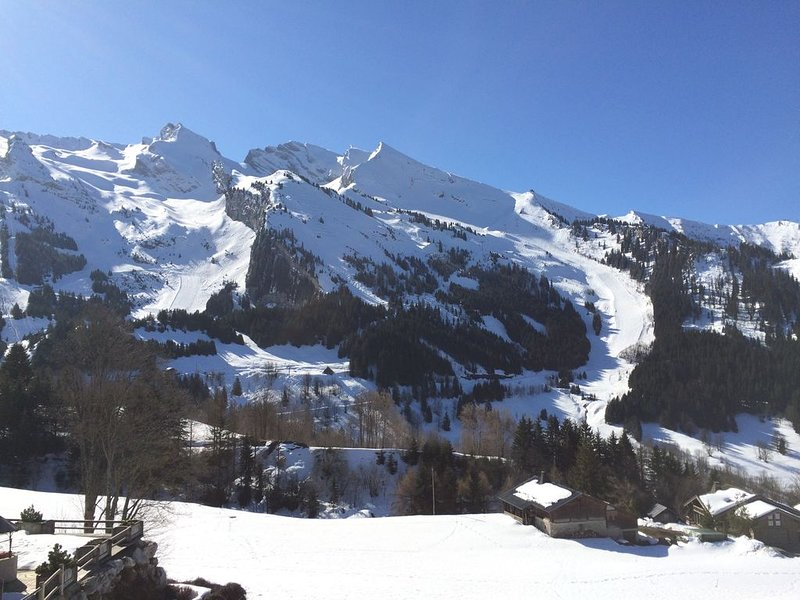 La Clusaz Ski Apartment, 3***south facing with glorious mountain views + balcony, vacation rental in La Clusaz