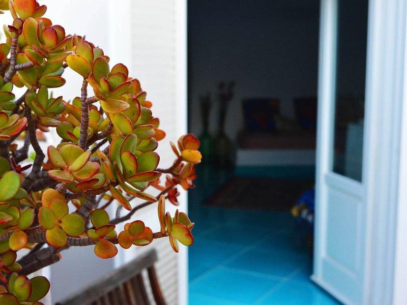Il Sogno... in the island., location de vacances à Île de Ponza
