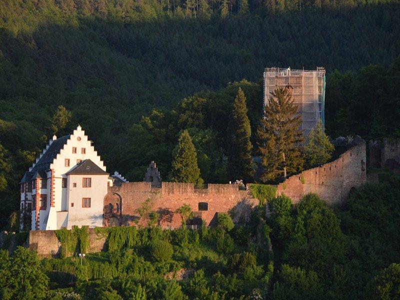 Panorama-Blick Miltenberg, 3 Pers., zentr., am Main, Terrasse, Bootverleih, P, holiday rental in Obernburg