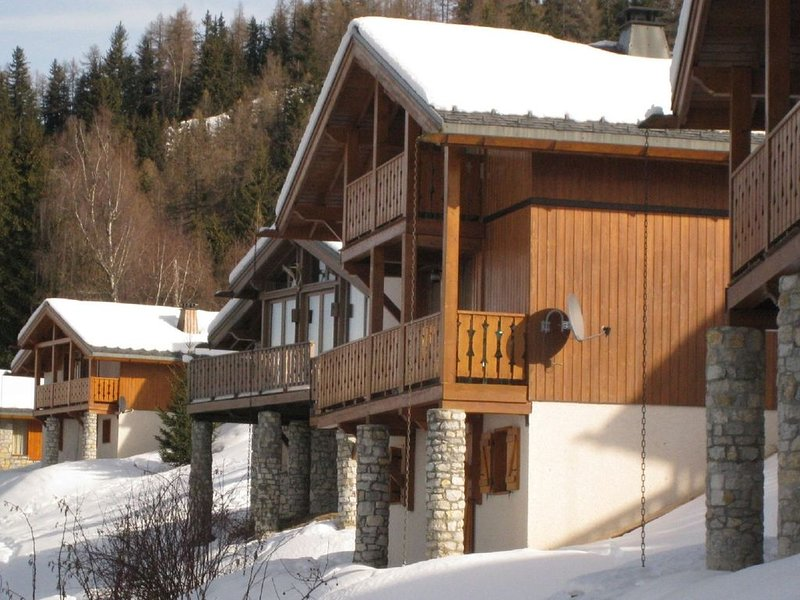 Spacious Chalet in Vallandry near Ski Area, holiday rental in Peisey-Vallandry