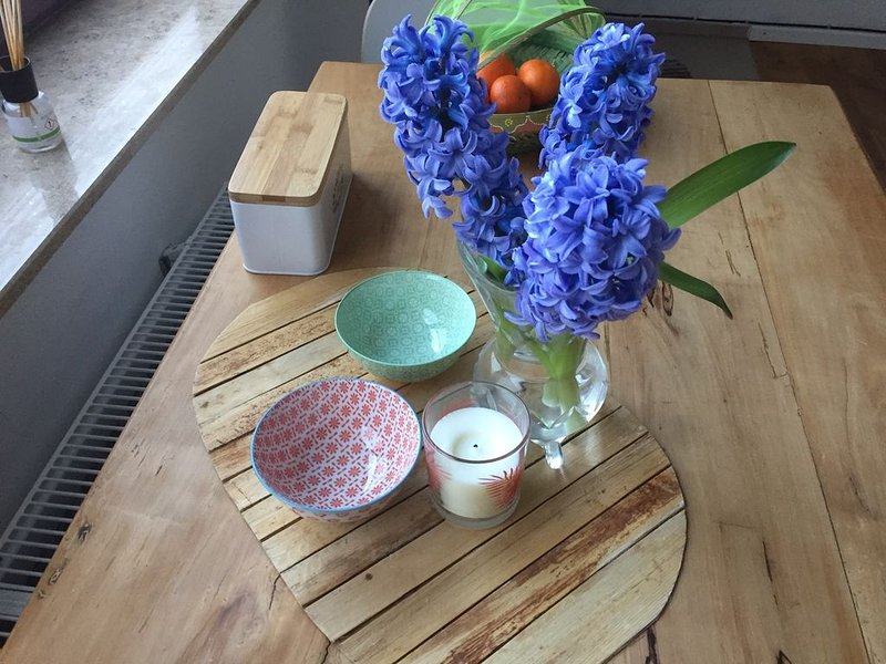 stilvolles Appartment neu sarniert mit Küche, alquiler vacacional en Bamberg