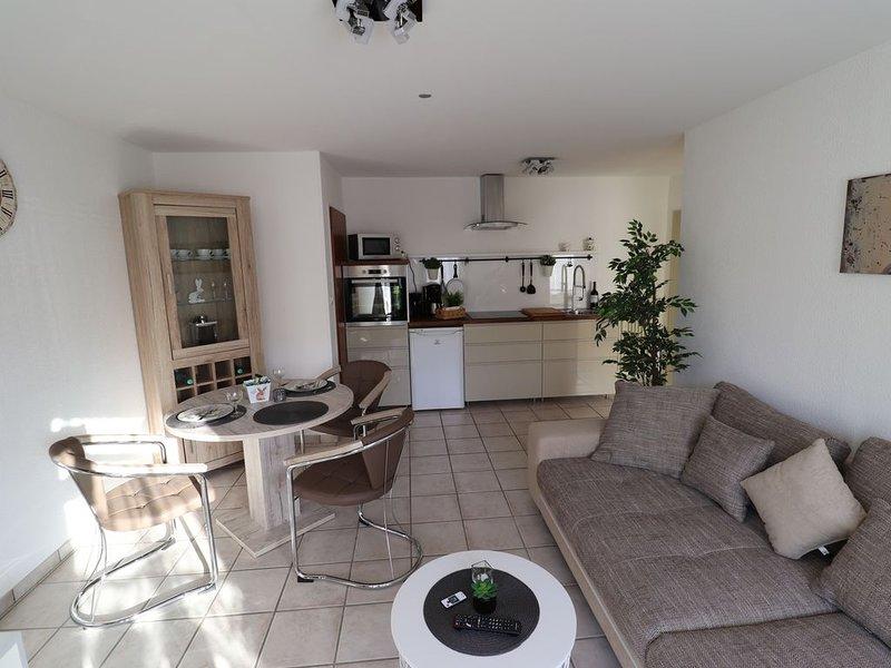 Moderne Wohnung Souterrain, location de vacances à Schleiden