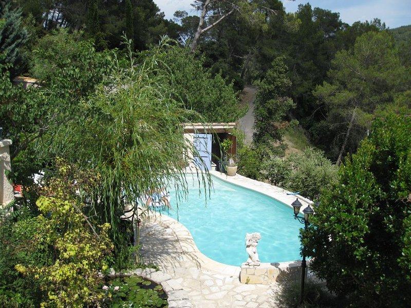 Mas provençal en pierres naturelles dans une colline boisée avec piscine ., holiday rental in Cabasse
