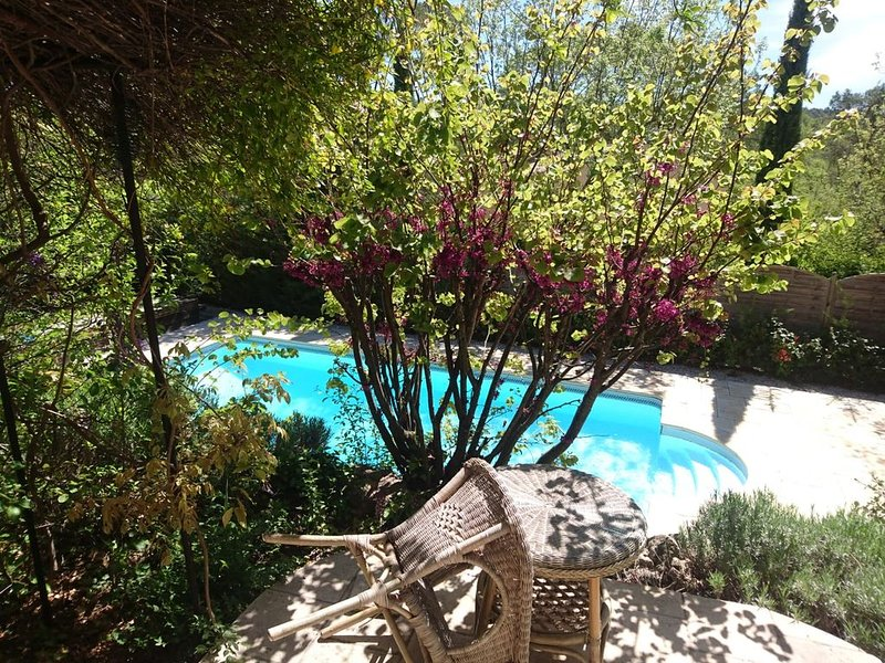 Villa conviviale 4 chambres et piscine chauffée, holiday rental in Le Thoronet