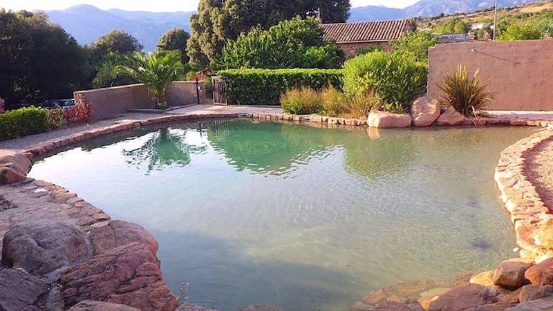 Maison Le Citronnier avec piscine pour 4/6 pers, holiday rental in Cuttoli-Corticchiato