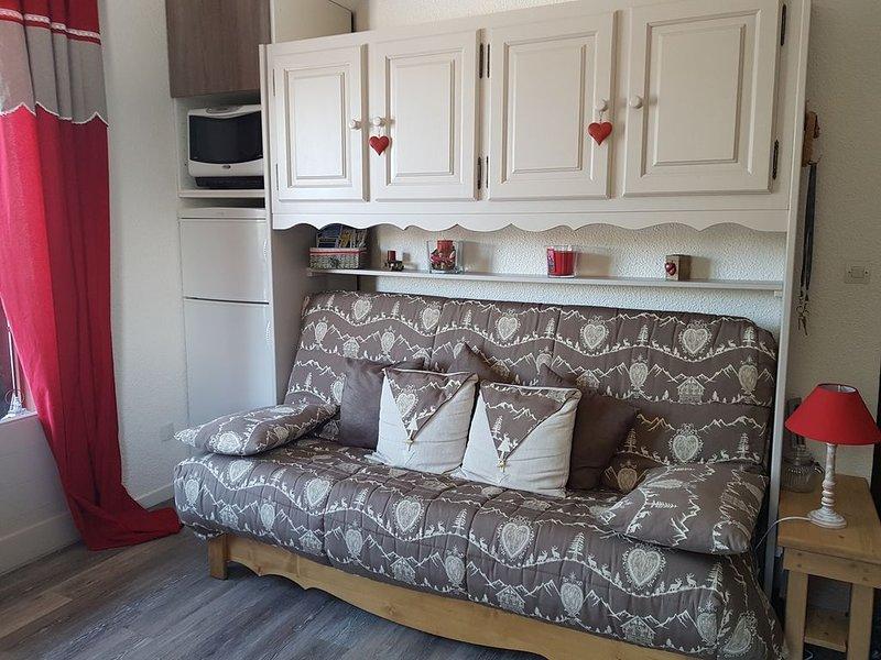 Appartement tout confort 4-6 personnes PRAZ DE LYS, casa vacanza a Onnion