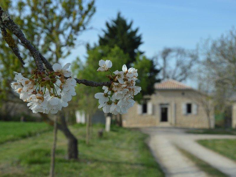 Maison de campagne familiale et chaleureuse, holiday rental in Plieux