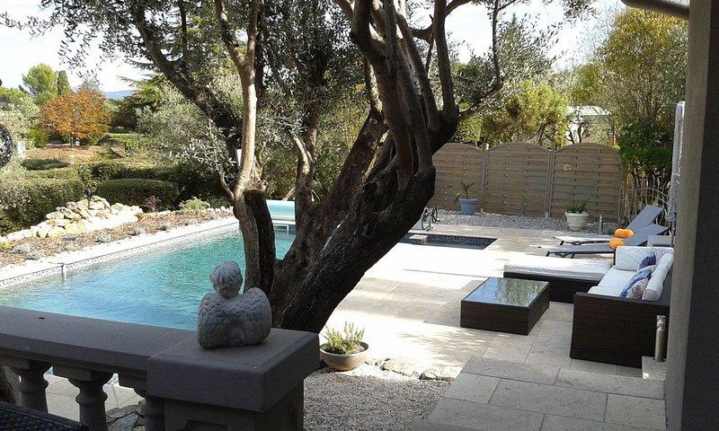 Villa Moderne au calme avec vue , oliviers,  piscine, holiday rental in Trans-en-Provence