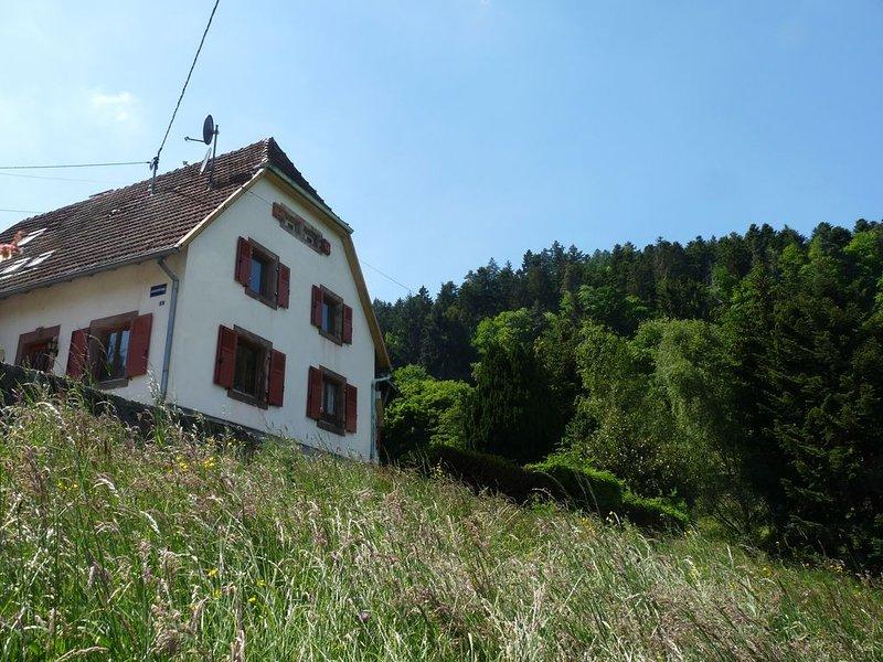 Gite du wiedenthal au coeur de la vallée de Munster, Alsace, holiday rental in Sondernach
