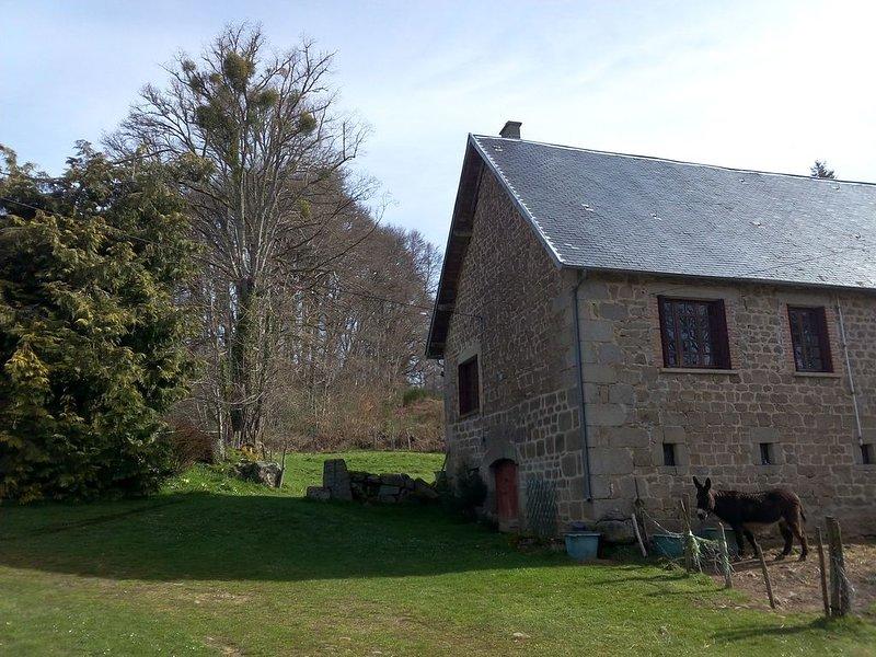Maison si entre Aubusson et cité médiévale de Crocq, holiday rental in Felletin