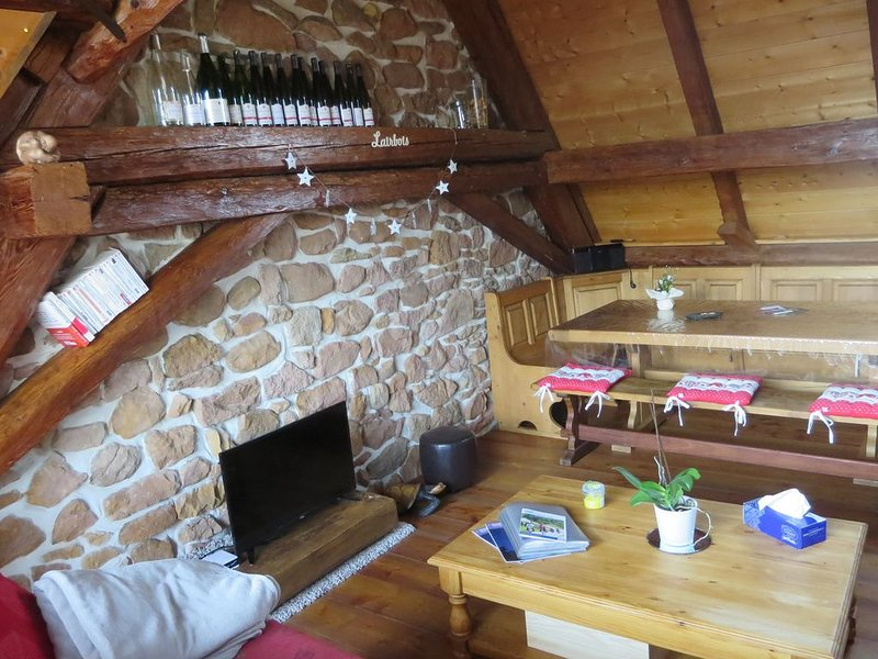 Maison chaleureuse***, holiday rental in Albe