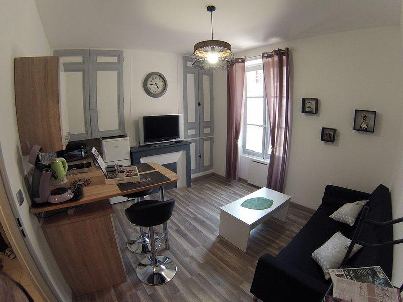 Appartement au cœur du centre de Blois, holiday rental in Saint-Gervais-la-Foret