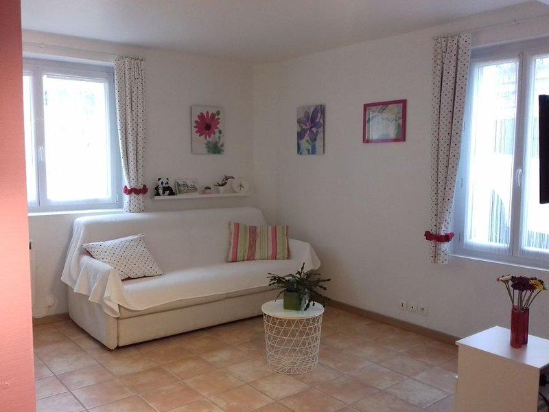 Studio entièrement aménagé au coeur des châteaux de la Loire, casa vacanza a Nazelles