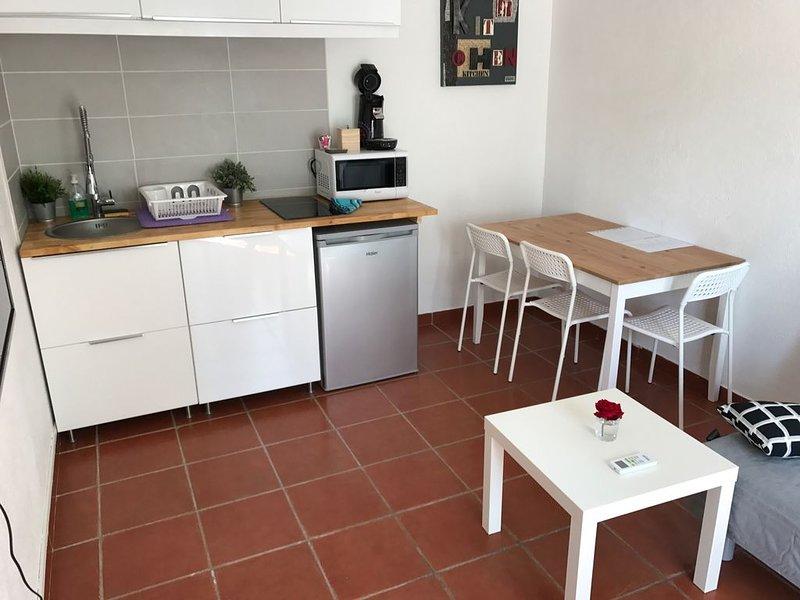 Appartement La LAVANDE, holiday rental in Fourques